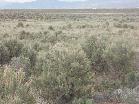Land for Sale at 81.41 ACRE T 34 S. R 14 W. SEC. 31 Beryl, Utah 84714 United States