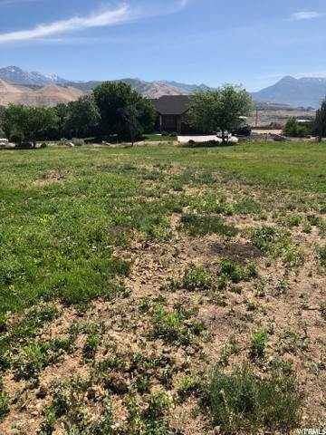Land for Sale at 16885 1400 Bluffdale, Utah 84065 United States
