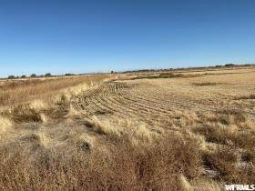 Land for Sale at 3500 2000 Oasis, Utah 84624 United States