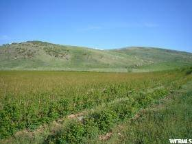 Land for Sale at Address Not Available Laketown, Utah 84038 United States