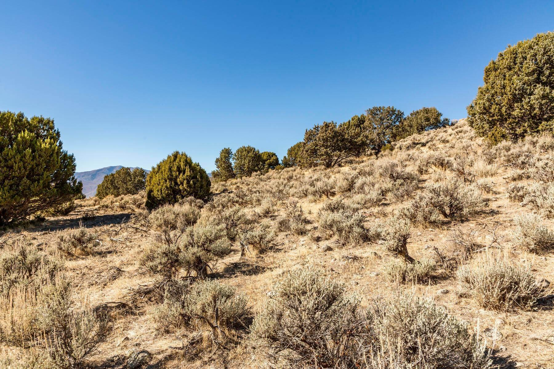 17. Land for Sale at Premier Custom Corner Homesite With Phenomenal Views In Exclusive Red Ledges 3205 E Horsehead Peak Court, Lot 171 Heber City, Utah 84032 United States