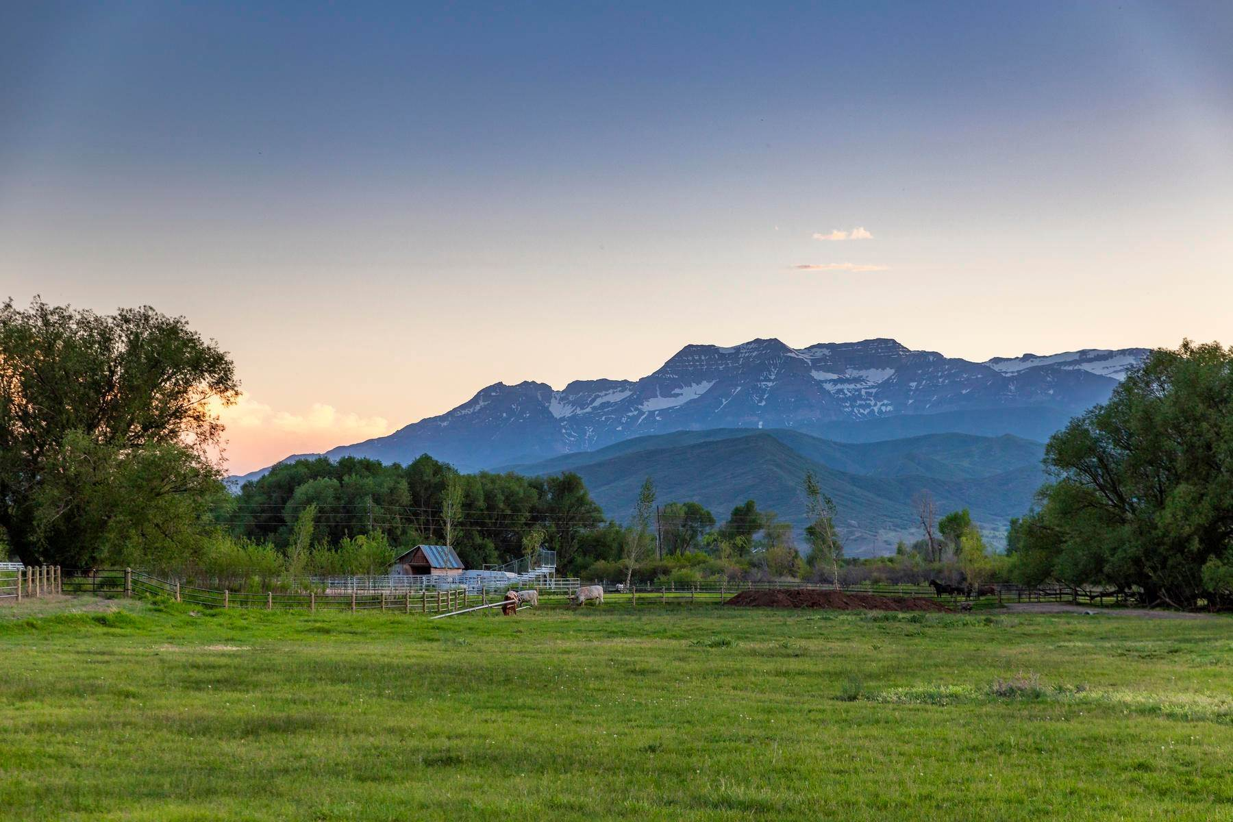 3. Land for Sale at Beautiful 7.68 Acre Lot Near The Provo River 1500 W Midway Ln, #9 Heber, Utah 84032 United States