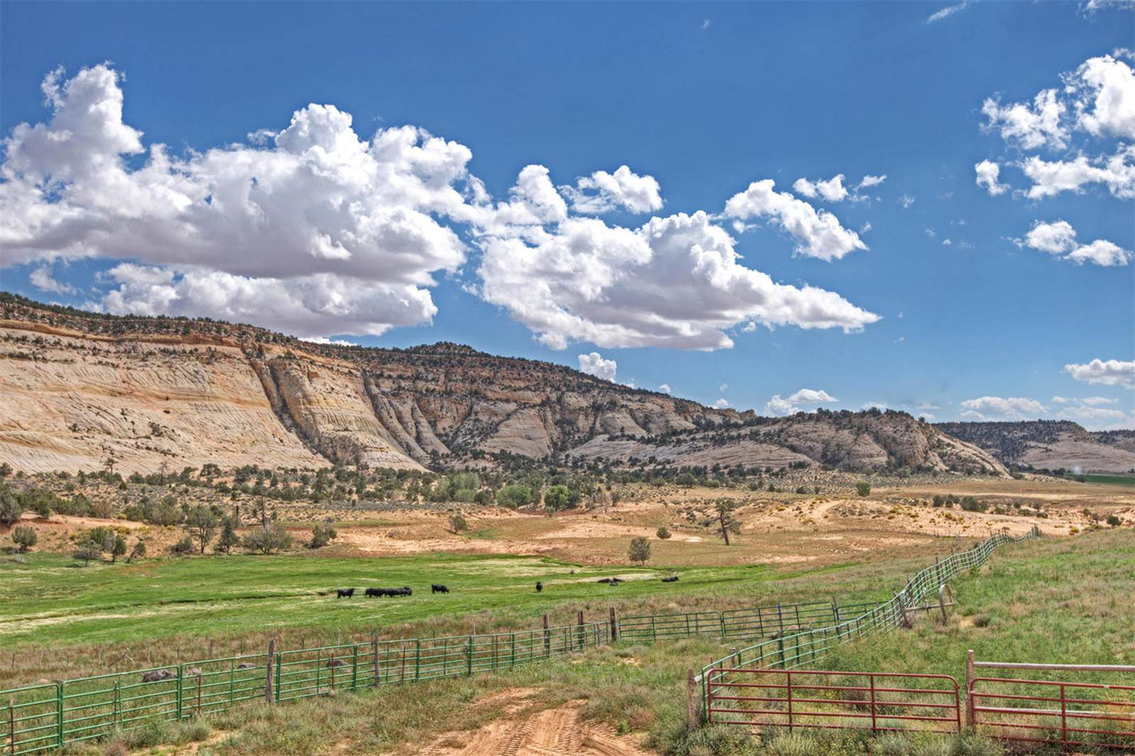 robison ranch