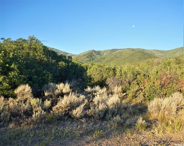 4. Land for Sale at Address Not Available Wallsburg, Utah 84082 United States