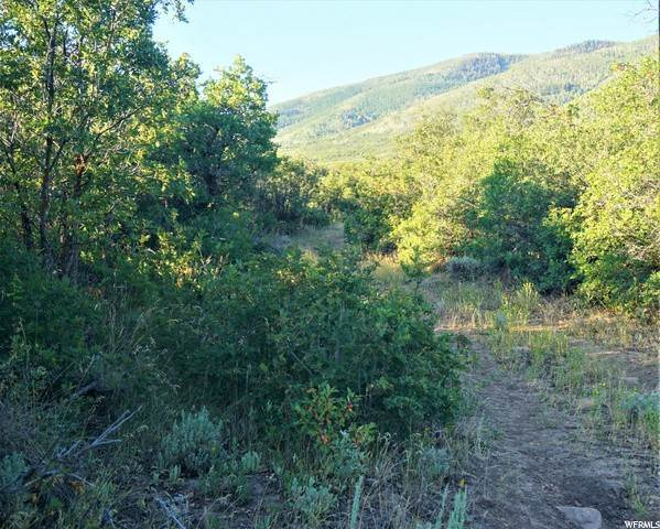 8. Land for Sale at Address Not Available Wallsburg, Utah 84082 United States