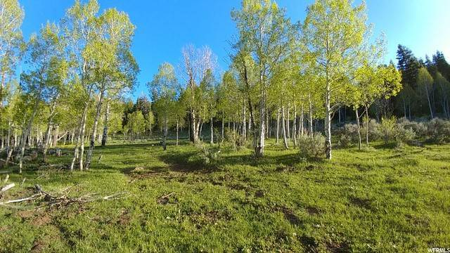 Land for Sale at Annabella, Utah 84711 United States