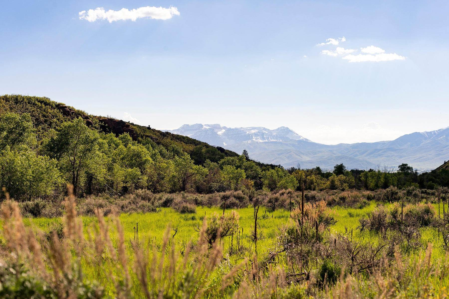 50. Land for Sale at Stunning Views of Mount Timpanogos from Over 406 Acres in Heber Valley Lake Creek Road Heber, Utah 84032 United States