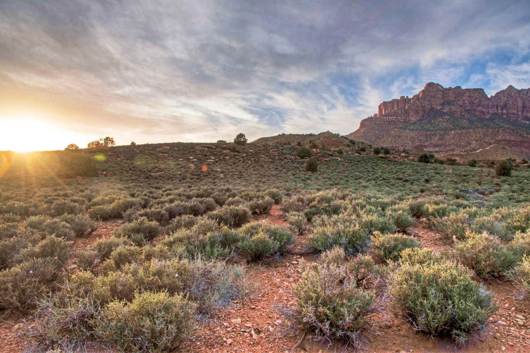 12. Land for Sale at Ultimate Zion Overlook 2613 Canyon Point Dr, Lot 3 Springdale, Utah 84767 United States