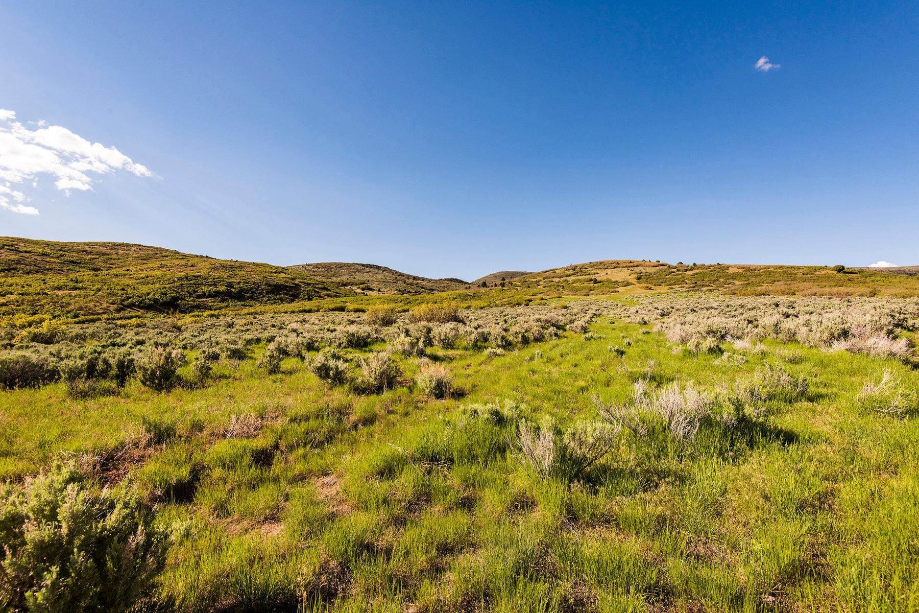 19. Land for Sale at Stunning Views of Mount Timpanogos from Over 406 Acres in Heber Valley Lake Creek Road Heber, Utah 84032 United States