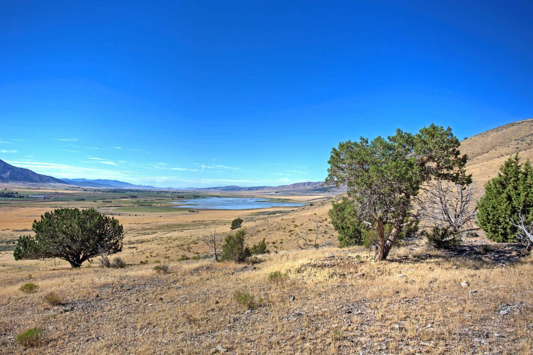 Land for Sale at 211 Acres in Mona 211.68 Acres No Situs Address Mona, Utah 84645 United States
