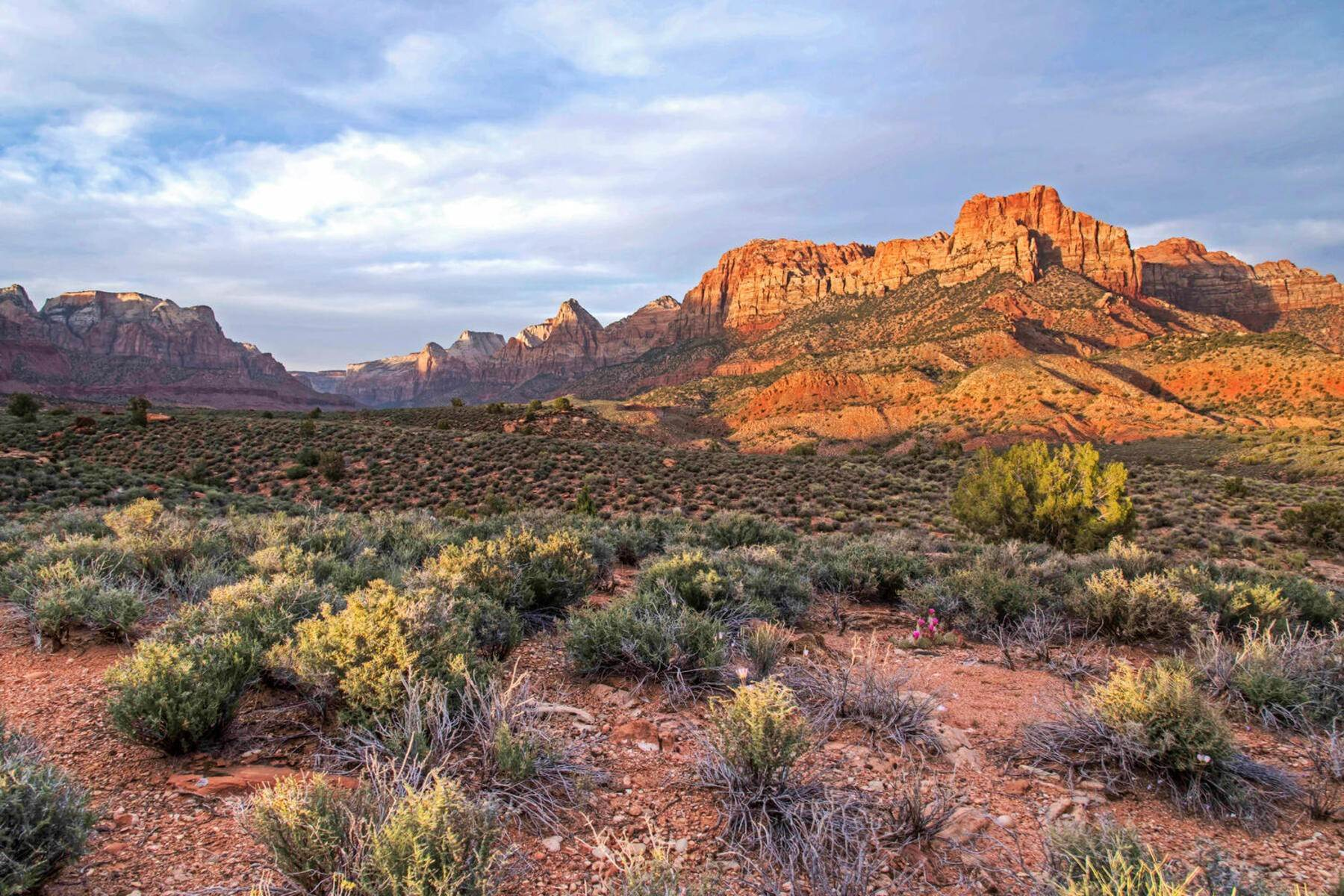 19. Land for Sale at Ultimate Zion Overlook 2613 Canyon Point Dr, Lot 3 Springdale, Utah 84767 United States