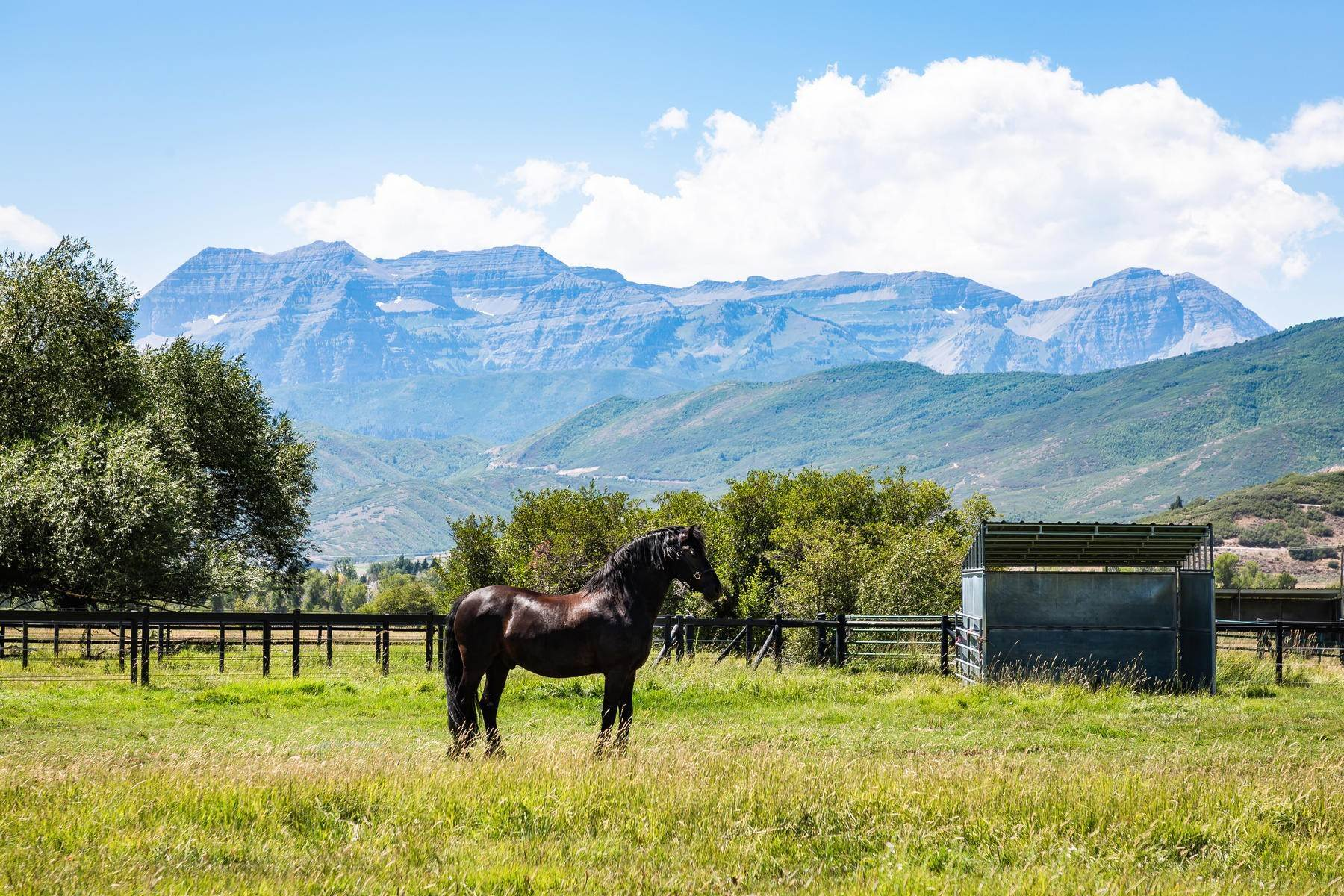 8. Farm and Ranch Properties for Sale at Shamans Circle Ranch—61 Acres with an Indoor Riding Facility in Heber 1336 N 1750 W Heber City, Utah 84032 United States