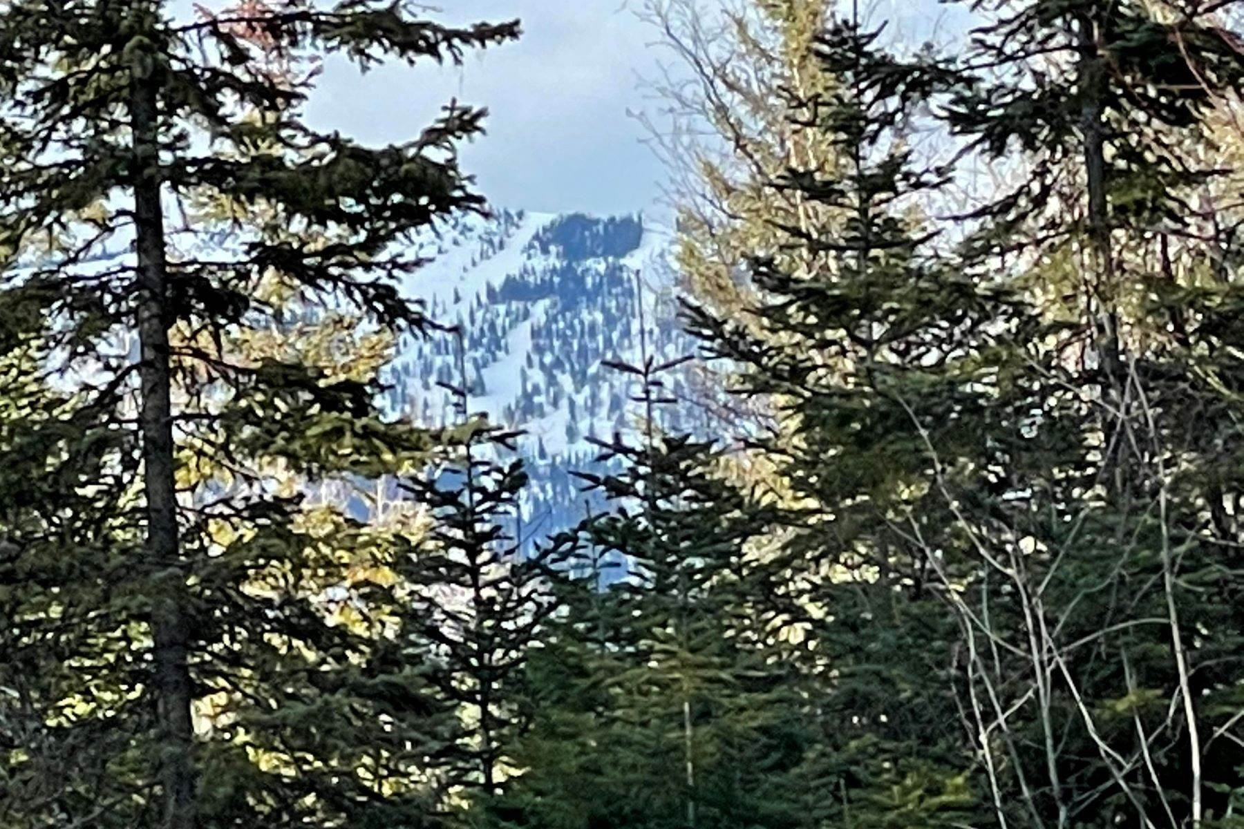4. Land for Sale at Tamarack Ridge Homesite 38 Harlequin Court Whitefish, Montana 59937 United States
